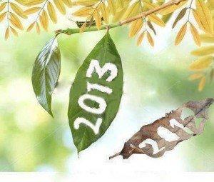 Bonne Année 2013 !  dans Apports 2013...-31-300x255