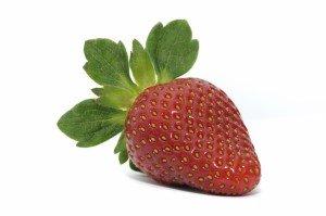 fraise #9