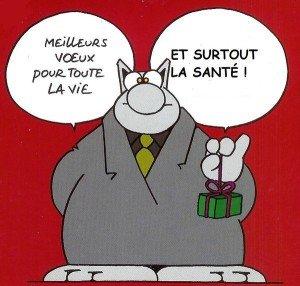 ...bonne-annee2